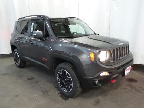 2017 Jeep Renegade Trailhawk in Victoria, MN