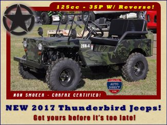 2017 Thunderbird Jeep - NEW - LIMITED QUANTITY - LOTS OF FUN! Mooresville , NC