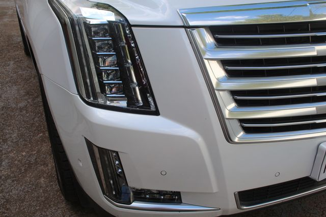 2018 Cadillac Escalade ESV Platinum Houston, Texas 6