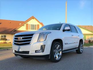 2018 Cadillac Escalade Luxury in Houston, TX 77038