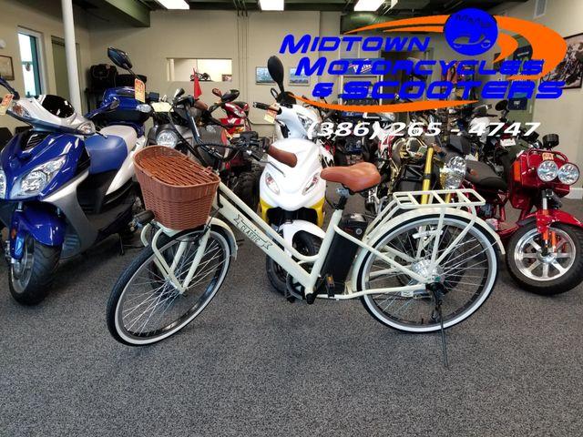 2018 Diax Classic Electric Bicycle