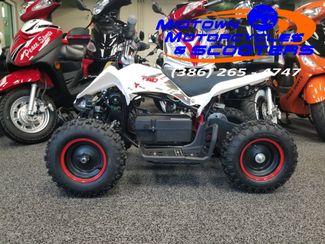 2018 Daix Electric Quad in Daytona Beach , FL 32117