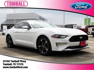2018 Ford Mustang EcoBoost in Tomball, TX 77375