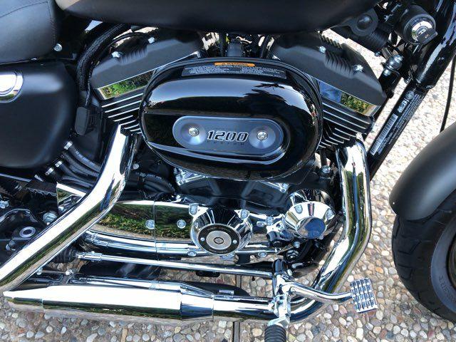 2018 Harley-Davidson XL1200 Custom in McKinney, TX 75070