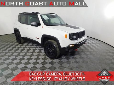2018 Jeep Renegade Trailhawk in Cleveland, Ohio