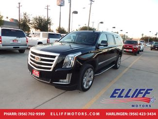 2019 Cadillac Escalade ESV Luxury in Harlingen, TX 78550