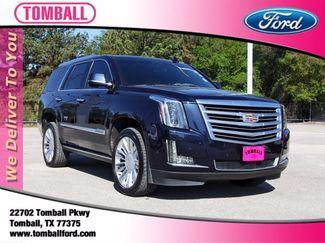 2019 Cadillac Escalade Platinum in Tomball, TX 77375