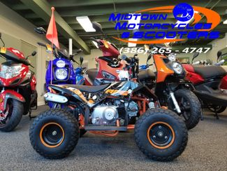 2019 Daix Gremlin Quad in Daytona Beach , FL 32117