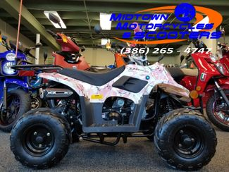 2019 Diax Gremlin Quad in Daytona Beach , FL 32117