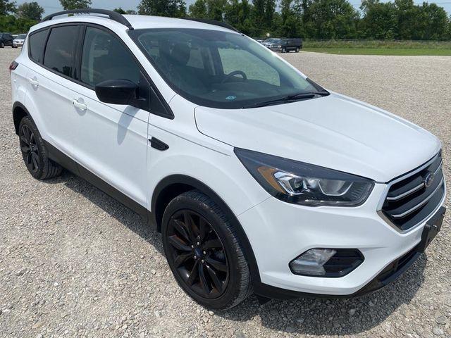 2019 Ford Escape SE in St. Louis, MO 63043