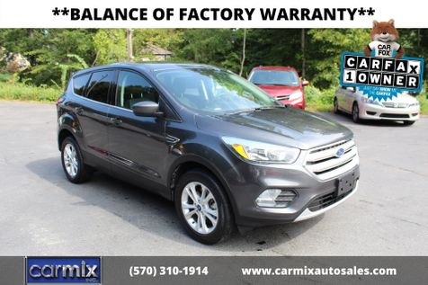 2019 Ford Escape SE in Shavertown
