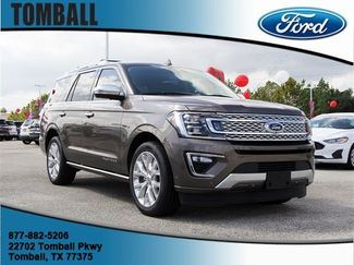 2019 Ford Expedition Platinum in Tomball, TX 77375