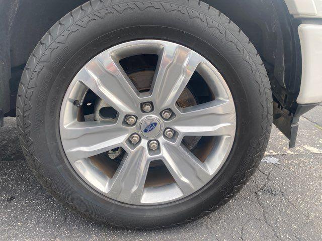 2019 Ford F-150 Platinum in Amelia Island, FL 32034