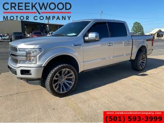 2019 Ford F-150 Platinum 4x4 EcoBoost Leveled 22s Toyo Tires Roof in Searcy, AR 72143