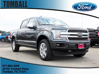 2019 Ford F-150 Platinum in Tomball, TX 77375