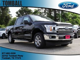 2019 Ford F-150 XLT in Tomball, TX 77375
