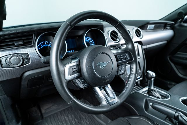 2019 Ford Mustang GT 5.0 With Upgrades in Addison, TX 75001
