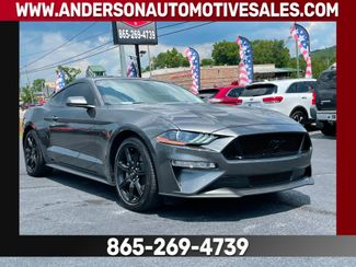2019 Ford MUSTANG GT 5.0 in Clinton, TN 37716