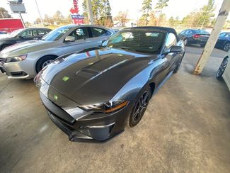 2019 Ford Mustang Eco - John Gibson Auto Sales Hot Springs in Hot Springs Arkansas
