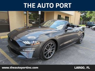 2019 Ford Mustang EcoBoost Premium in Largo, Florida 33773