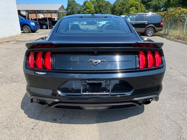 2019 Ford Mustang EcoBoost Madison, NC 2