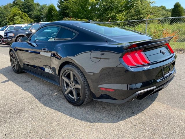 2019 Ford Mustang EcoBoost Madison, NC 3