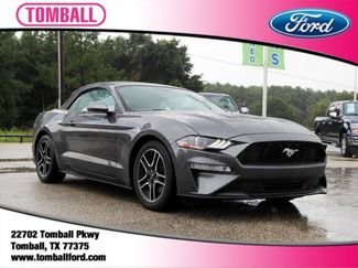 2019 Ford Mustang in Tomball, TX 77375