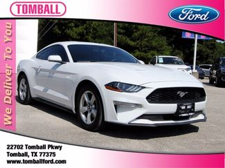 2019 Ford Mustang EcoBoost in Tomball, TX 77375