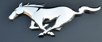 2019 Ford Mustang EcoBoost Premium Waterbury, Connecticut 15