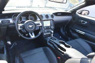 2019 Ford Mustang GT Premium Waterbury, Connecticut 15
