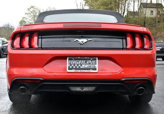2019 Ford Mustang EcoBoost Premium Waterbury, Connecticut 35