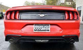 2019 Ford Mustang EcoBoost Premium Waterbury, Connecticut 4