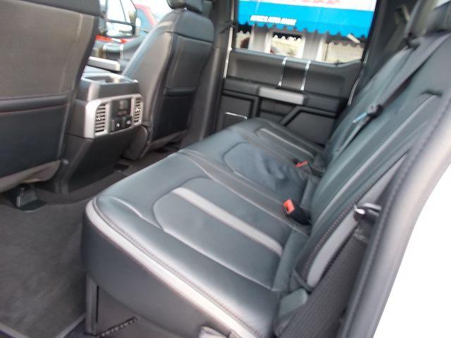 2019 Ford Super Duty F-250 Pickup Platinum Shelbyville, TN 28