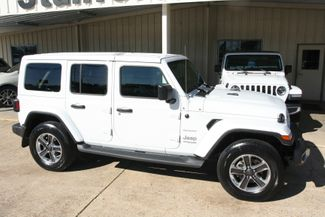 2019 Jeep Wrangler Unlimited Sahara in Vernon Alabama