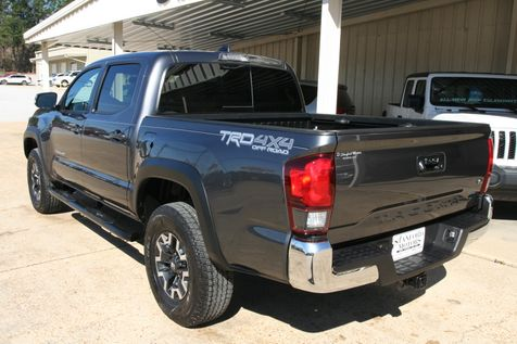 2019 Toyota Tacoma TRD Off Road in Vernon, Alabama