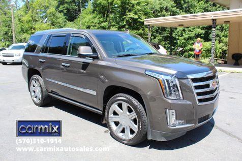2020 Cadillac Escalade Premium Luxury in Shavertown