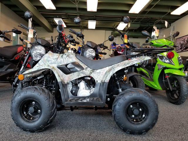 2020 Daix Gremlin Quad 110cc