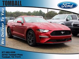 2020 Ford Mustang EcoBoost in Tomball, TX 77375