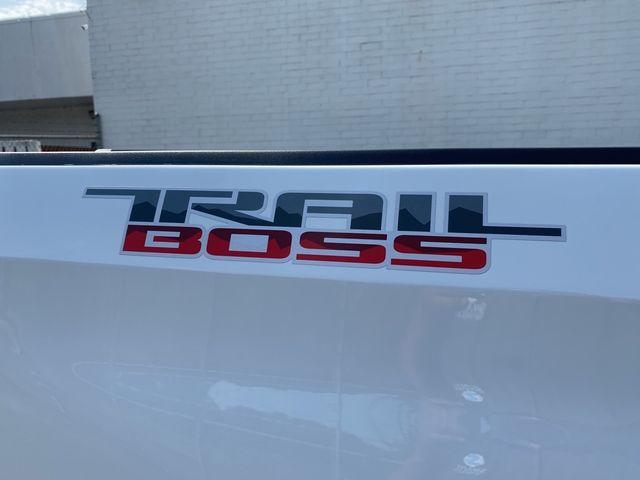 2021 Chevrolet Silverado 1500 Custom Trail Boss Madison, NC 18
