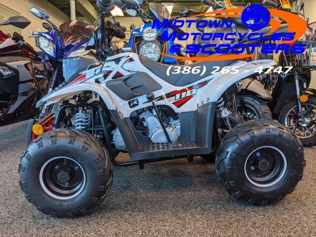 2021 Daix Gremlin Quad 110cc
