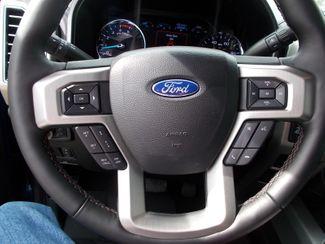 2021 Ford Super Duty F-350 SRW Pickup Platinum Shelbyville, TN 35